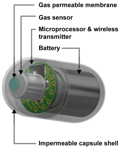 The pill uses a sensor to identify the gas in the gut.